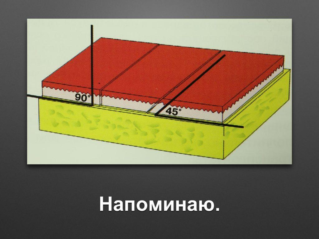 slajd9